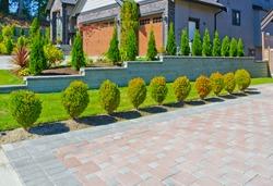Nicely trimmed bushes along paved driveway. Landscape design.