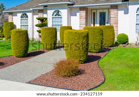 Nicely trimmed bushes at the entrance ( doorway ) to the custom built big luxury house in a residential neighborhood. Landscape design.