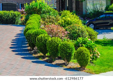 nicely trimmed bushes along paved driveway landscape design free