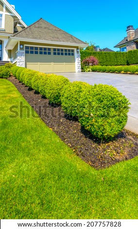 Nicely trimmed bushes in the row along the driveway to garage.  Landscape design. Vertical.