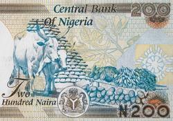 Nigeria 200 naira  banknote close up, Nigerian money closeup.