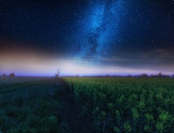 Nigh landscape with starry sky over field of blooming rape seed. Calm night landscape