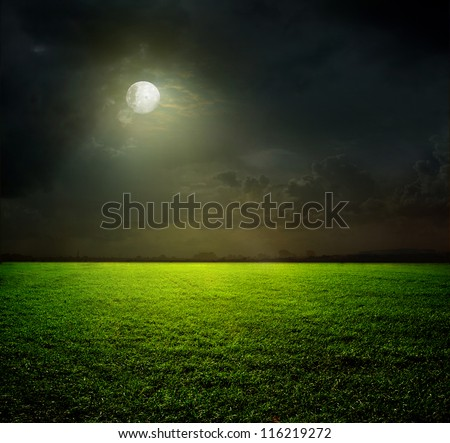 Night and the moon on a green field #116219272