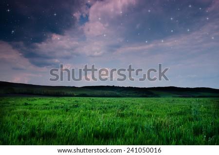 night background #241050016