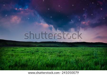 night background #241050079