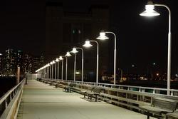 night bridge against the background of night city