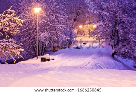 Night evening winter snow park alley. Winter snow park alley in night. Winter night park alley view. Winter snow park alley at night