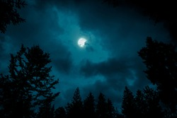 Night mysterious landscape in cold tones - silhouettes of forest trees under the full moon through the clouds on dramatic night sky.