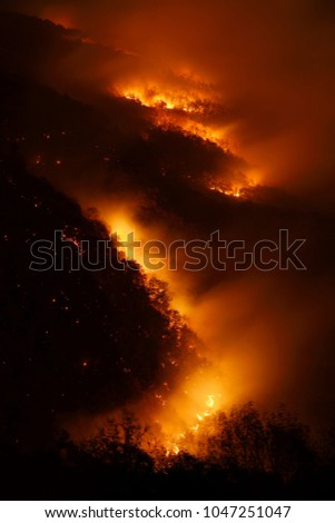 Night photography of a wildfire in a mountain forest