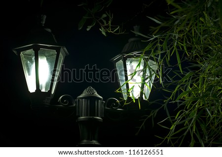 Night picture of the lamp close up. Decorative garden in the night. - stock photo
