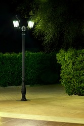 Night picture of the lamp in the park. Decorative garden in the night.