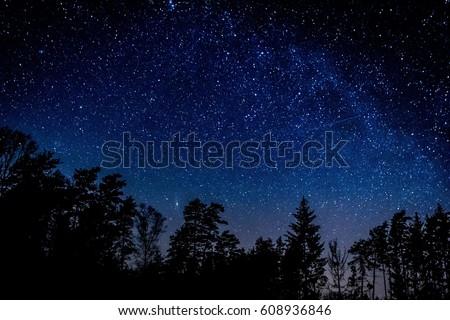 Night sky over rural landscape. Beautiful night starry sky, high ISO landscape.  - Shutterstock ID 608936846