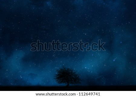 Night sky with Lonely tree