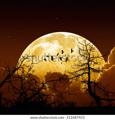 Night sky with yellow full moon, stars, flock of flying ravens, crows, tree silhouette. Elements of this image furnished by NASA