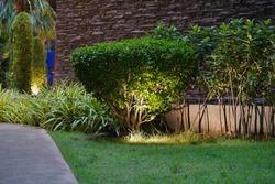 Night tropical garden with lanterns.