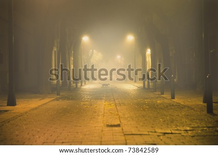 night urban landscape with fog and black cat