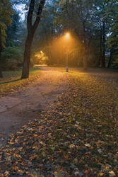Night view. Landscape of alleyway with street lamps at misty night. Dark street illuminated with street lights. Romantic or dramatic atmosphere during dusk in autumn. Beautiful background concept.