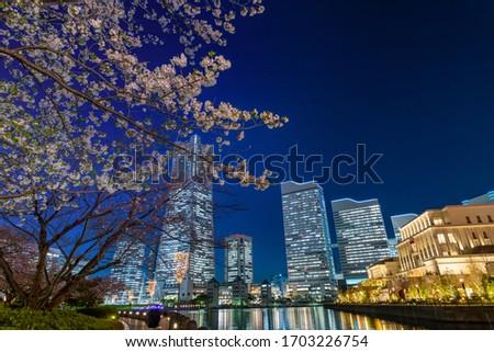 Night view of cherry blossoms and Yokohama Minatomirai stock photo