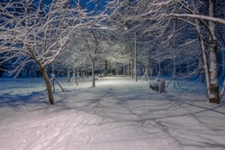 Night view of the alley of the city park, illuminated by lanterns. The branches of trees and benches are covered with snow. There are traces of human feet on the road. Fabulous New Year's mood.