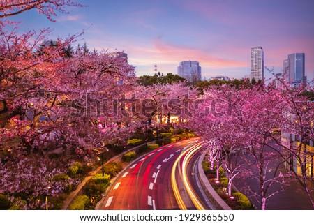 night view of tokyo midtown in roppongi,  japan Stock photo ©
