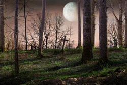 Night with a full moon over the cemetery