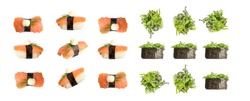 Nigiri Sushi and Susi with Green Seaweed Chukka Collection Isolated on White Background. Set of Susi with Salmon and Nori Isolated