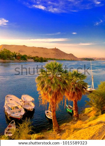 Nile River at Aswan . Aswan . Egypt
