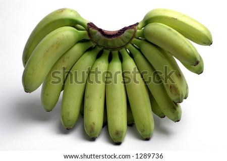 nino small little bananas also called lady banana from