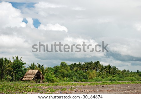 Nipa Hut Interior Nipa Hut on Beach Shoreline
