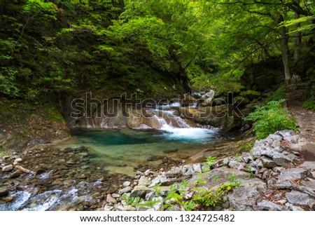 Nishizawa Valley. Japan. #1324725482
