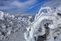 Niubeishan Landscape, Snow sculptures, Ice Frost and Rime. Cattle Back Mountain above the clouds, Sichuan Province China. Snow mountains, Frozen Winter Landscape, Frigid Cold Atmosphere, Frozen Trees