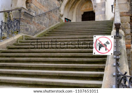No dogs allowed sign. Dog is not allowed going on the stairs.