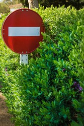 No entry or Do not enter traffic sign overgrown in green flowering hedge. Road sign trapped in bush. power of nature concept, stop pollution and human impact on planet