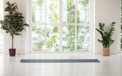 No people inside, two natural potted plants empty yoga black mat light cozy room idyllic place for work out with beautiful nature landscape outside green trees summer sunny day, concept of yoga class