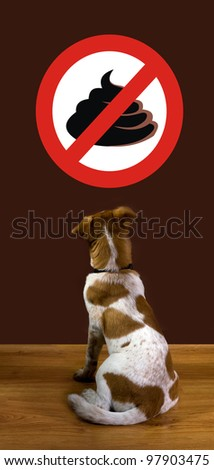 No Poop - stock photo