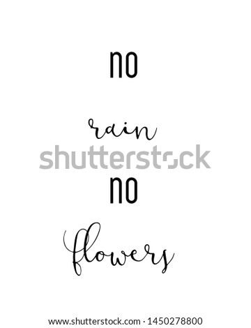 no rain no flowers print. typography poster. Typography poster in black and white. Motivation and inspiration quote. Black inspirational quote isolated on the white background.