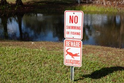 No swimming or fishing, beware alligators, a sign by a pond in South Florida