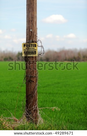No Trespassing, No Hunting Sign on an old wood telephone pole in front of a grassy field.