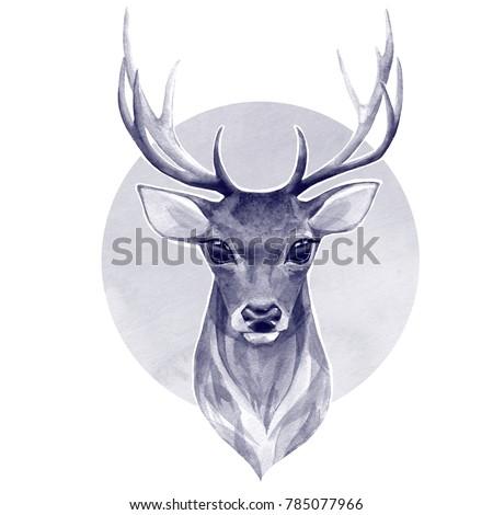 Noble deer. Watercolor illustration - Shutterstock ID 785077966