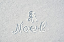 Noel letters, twig tree mark handdrawn on flat snow surface. Nice christmas holiday square postcard, greeting card.