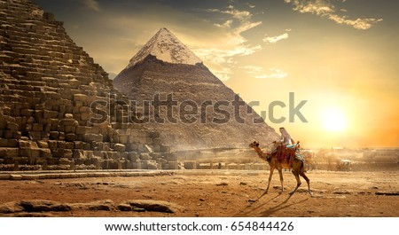 Nomad on camel near pyramids in egyptian desert #654844426