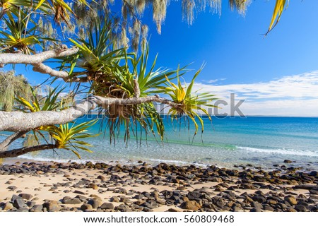Noosa National Park on Queensland's Sunshine Coast #560809468