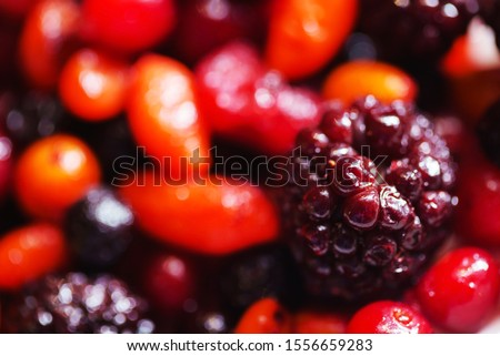 nordic berries on the plate