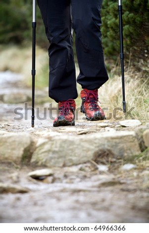 Nordic Walking in Autumn mountains, woman on hiking trail