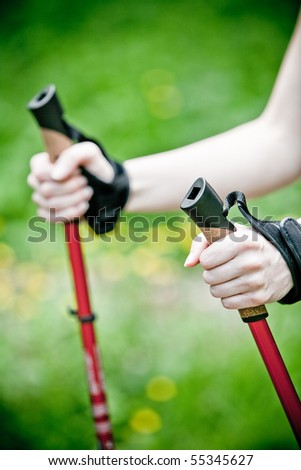 Nordic walking in summer nature