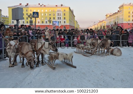 "NORILSK, RUSSIA - NOV 05: The reindeer-drawn sled at the annual festival of peoples of the Far North ""Bolshoy argish"" on November 05, 2011 in Norilsk, Russia"