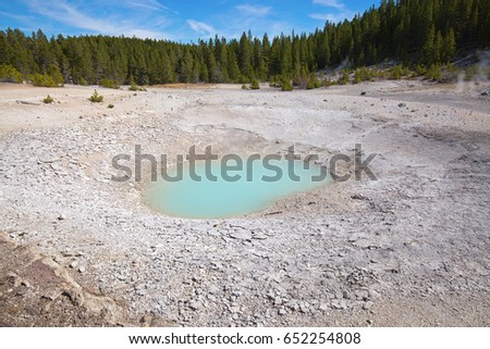 Norris geyser basin in the Yellowstone National park, USA #652254808