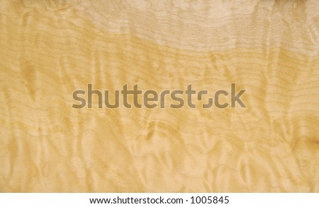 North American Curly Willow Wood Background