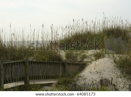 North Carolina dunes, boardwalk and Atlantic Ocean in background.