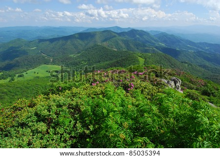 North Carolina Mountain Landscape Scenic The North Carolina Mountains as viewed from Grassy Ridge during the Catawba Rhododendron bloom in June.